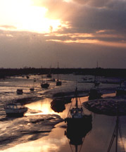 Overlooking the Estuary in Old Leigh